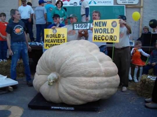 Guinness World Records 2013, Guinness World Records, Good Book