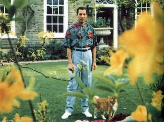 ultima-foto-Freddie-Mercury