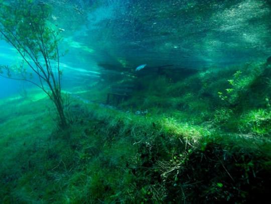 lagoo4