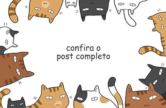 vantagens-gatos