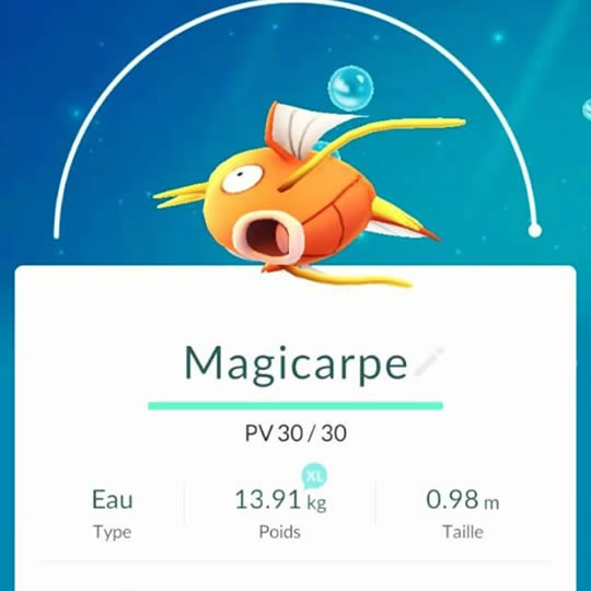 pokemon-go-magicarpe