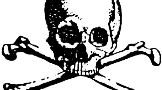 8 post skull