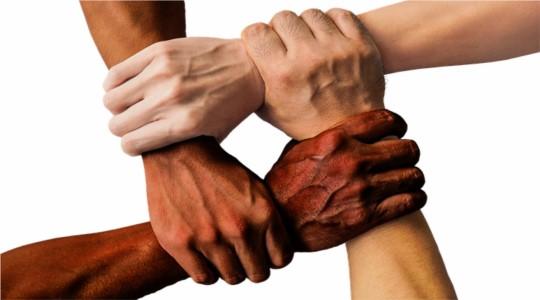 10 causas sociais que você pode ajudar